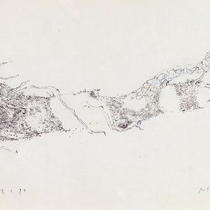 1973: Motivo vegetale | Bleistift auf Papier (20,5 x 29 cm)