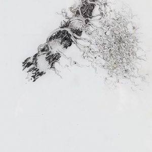1973: Motivo vegetale | Bleistift auf Papier (29,1 x 20,5 cm)